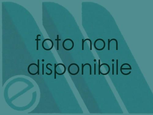 Griffa Bernina 1000, 1001, 1008